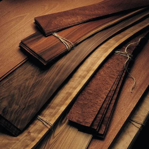 Close-up of several strips of veneer in different shades.