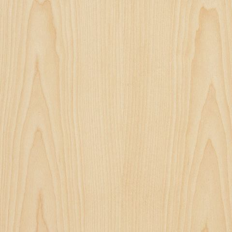 A swatch of Champagne Maple veneer.